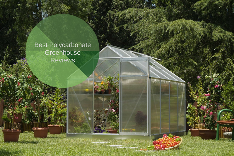 Best Polycarbonate Greenhouse
