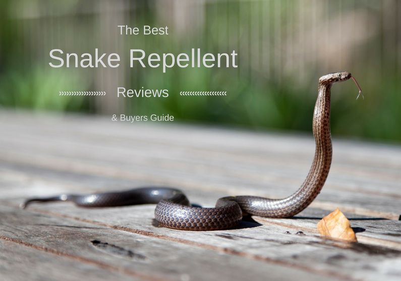 best snake repellent