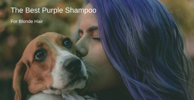 best purple shampoo for blonde hair