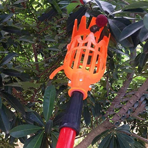 Top 10 Best Fruit Picker Poles & Tools - InTopTen com